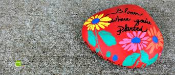Painting Rocks For Garden Painting Rocks Garden Diy It Forwardmom It Forward