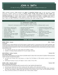 Sample Resumes For Sales Executives Samples U2013 Team Resumepro