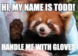 Hi Memes - meme creator red panda meme generator at memecreator org