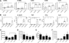 shaping the tumor stroma and sparking immune activation by cd40