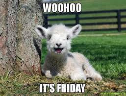 Alpaca Sheep Meme - woohoo it s friday make a meme