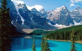 mountains nature forest canada alberta lakes banff national park