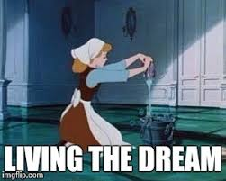 Cleaning Meme - cinderella cleaning memes imgflip
