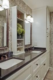 Pinterest Bathroom Storage 109 Best Bathroom Storage Images On Pinterest Bathroom Storage