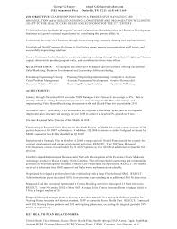 executive summary resume exles executive summary for resumes paso evolist co