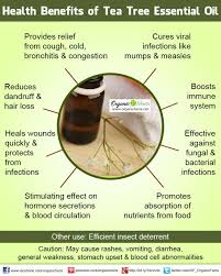 breathe essential oils blend by durance