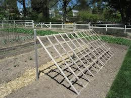make a trellis the st michaels community garden