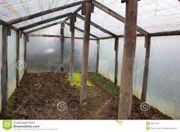 chicken coop inside greenhouse with inside your chicken coop 9556