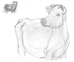 cow sketch by lilithdarck on deviantart