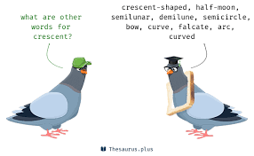 words crescent and half moon similar meaning