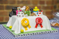 birthday cakes for dogs birthday cake pet dogs stock photos images pictures 23 images