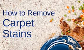 How To Remove Rug Stains How To Page