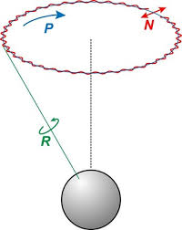 difference between circular motion and rotational motion