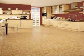 captivating cork flooring for kitchens pros and cons 56 on home