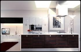 best modern kitchen designs elegant theme best kitchen designs 2011 image photos pictures