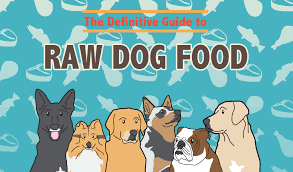 raw dog food recipes the definitive guide to raw dog food