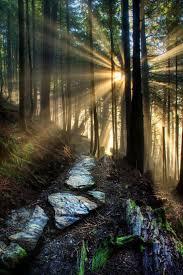 5845 best amazing beautiful nature images on pinterest beautiful