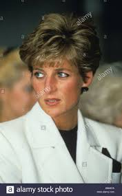 princess diana pinterest fans 2764 best princess diana images on pinterest duchess kate