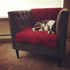 Nate Berkus Furniture Tufted Arm Chair Nate Berkus Target Finds