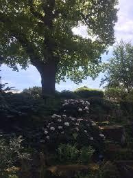 the beautiful rock garden picture of rhs garden wisley wisley