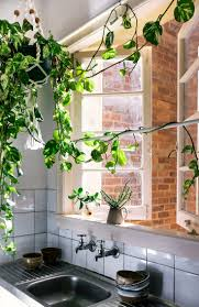 Green Kitchen by 2780 Best Farm House Decorating Images On Pinterest Home