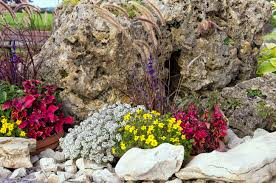 small rock garden rockery or alpine garden stock photo picture