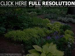 vegetable gardening in florida home outdoor decoration