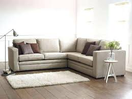 Small Sectional Sleeper Sofas Sleeper Sofa Costco Forsalefla