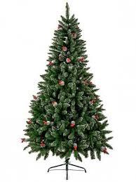premier premier 1 8m westfield pine tree with berries