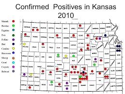 Kansas Map Past Summaries Of Results For Animals Suspected Having Rabies