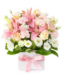 flowers to deliver flowers from 39 easyflowers australia send flowers online