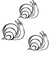 snail coloring pages coloringpages1001