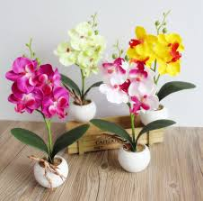 Decorative Flowers For Home by Compare Prices On Fake Orchids Online Shopping Buy Low Price Fake