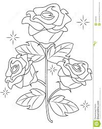 rose coloring page stock illustration image 51089206