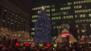 city of chicago accepting official christmas tree nominations