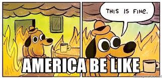 Everything Is Fine Meme - america be like everything is fine dog meme generator