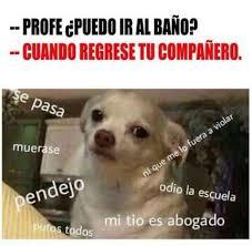 Memes En Espaã Ol - im磧genes de memes en espa祓ol www fotosbonitase viral total mcro