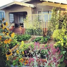 Backyard Organics 38 Homes That Turned Their Front Lawns Into Beautiful Vegetable