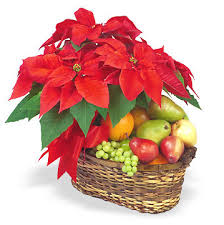 christmas fruit baskets christmas poinsettia and fruit basket at 1 800 florals