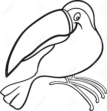 funny toucan for coloring book royalty free cliparts vectors and