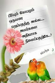wedding wishes dialogue in tamil 124 best tamil kavithai images on poem and feelings