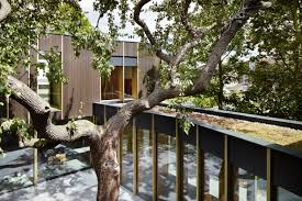 Pear Home Decor Architect Builds Family Home Around A Pear Tree In London Curbed