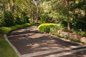 driveway decorating ideas landscape transitional with ornamental