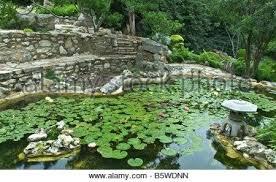 japanese garden austin u2013 exhort me