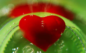 world of love wallpapers wallpapers of love hearts gallery 89 plus juegosrev com page