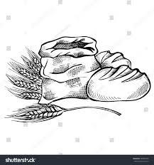 hand drawn food sketch bread doodle stock vector 599804726