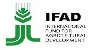Rural Finance In Selected Ifad Financed Operations Dr Ifad Pagesepsitename