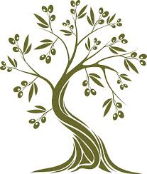 texture clipart olive tree pencil and in color texture clipart