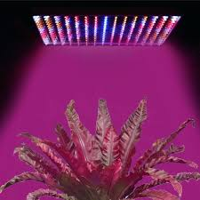 plant grow lights lowes plant grow light full spectrum led plant grow light set full