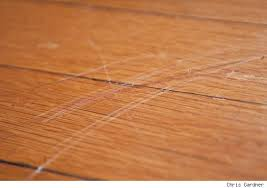 scratch in hardwood floor gurus floor